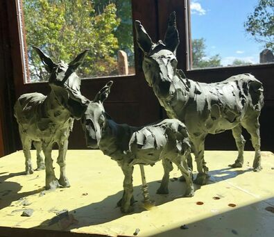 We are thrilled to have a new project with the City of Southlake. This time it's a fun homage to the burros that called the area being developed home: